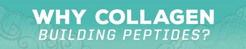 kolagen peptidi