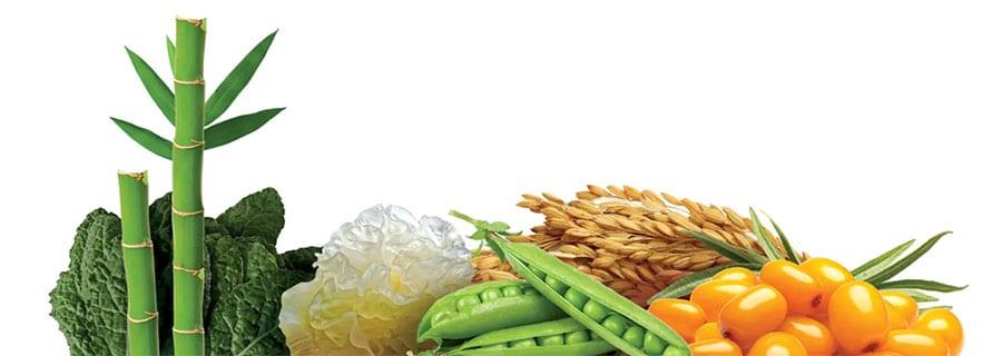 kolagen živila